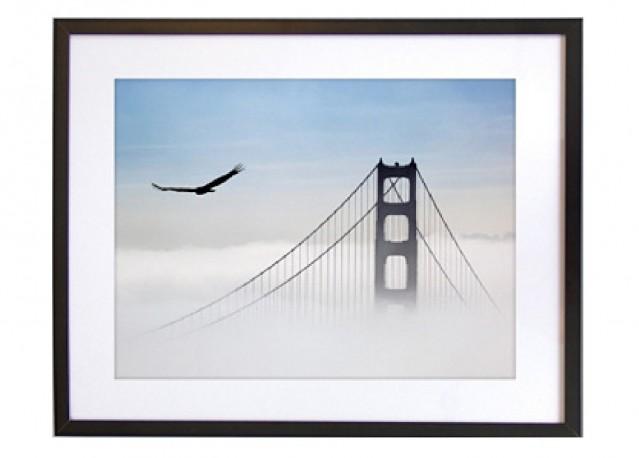 Aigle survolant le Golden Gate - 50 x 40 cm